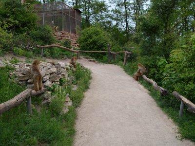 Besucherweg am Berberberg