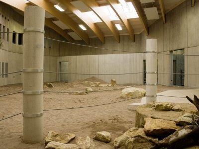 Innenbereich der Elefantenanlage