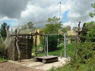 Außenbereich der Löwen-Savanne